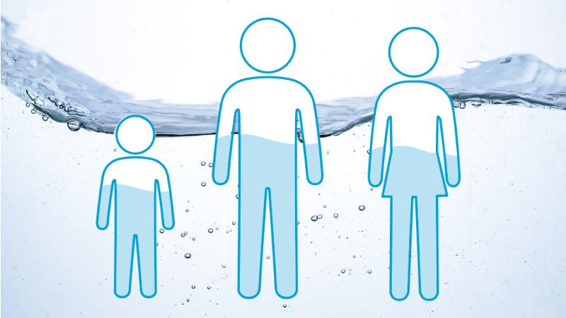 人間の水分量は55%以上といわれる
